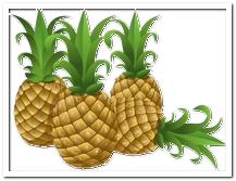 die Ananas - ananas