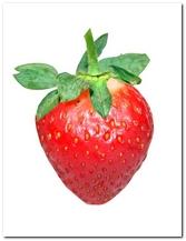die Erdbeere - truskawka