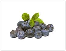 die Heidelbeere - jagoda, borówka