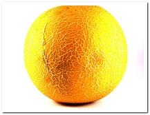 die Honigmelone - melon