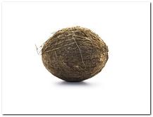 die Kokosnuss - kokos