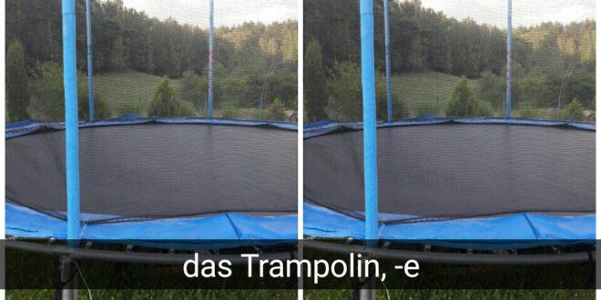 das Trampolin