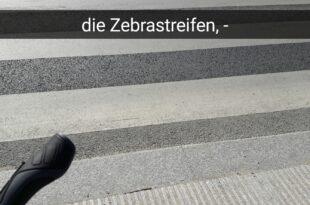 die Zebrastreifen